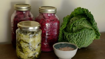Fermented vegetables for probiotics
