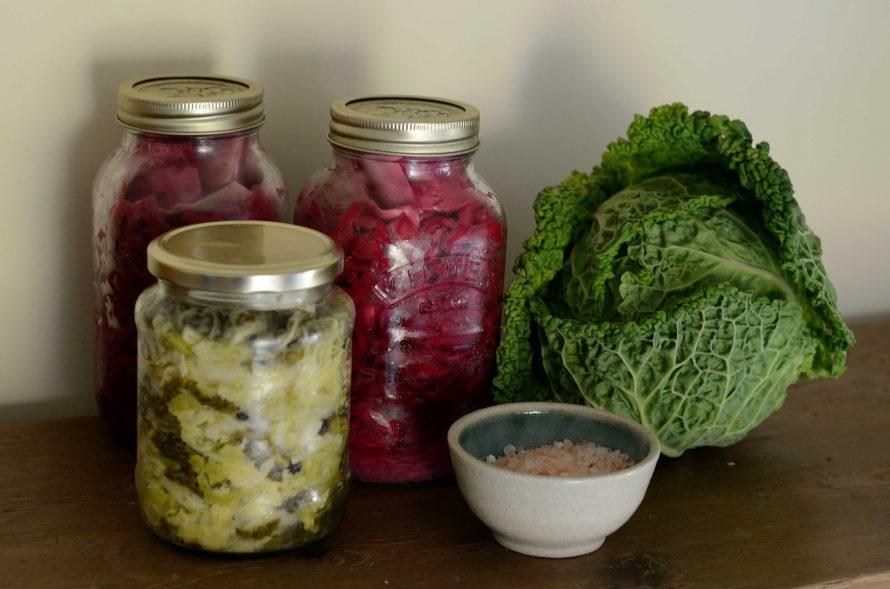 Fermented vegetables for probiotics
